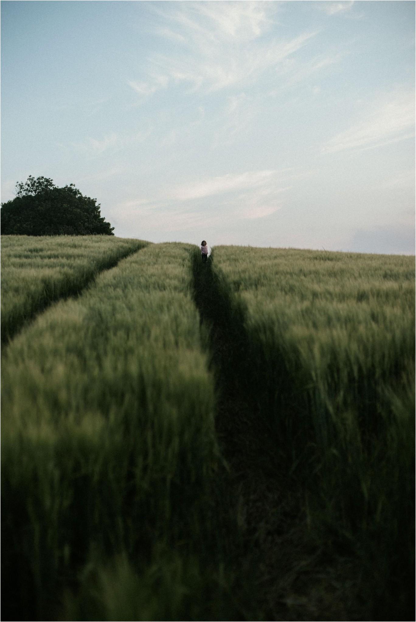 barleyearsandfoxcubs16