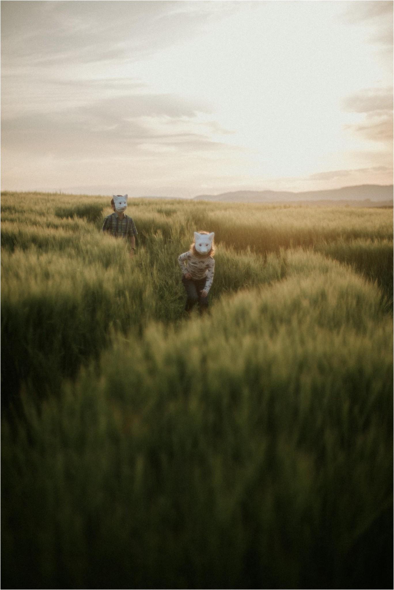 barleyearsandfoxcubs6