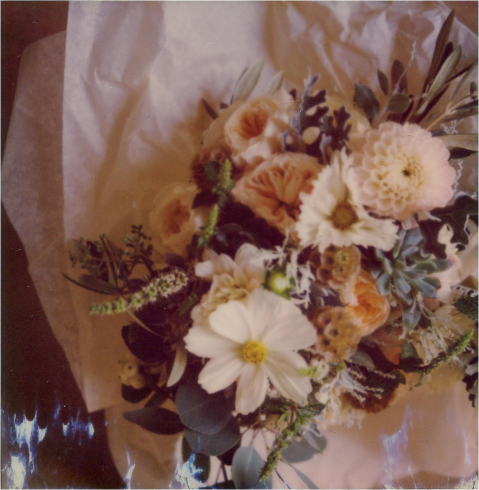 weddingsonfilmphotosbyzoe18