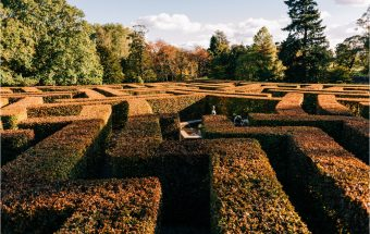 Autumn at Scone Palace
